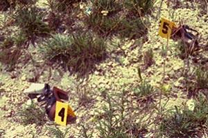 West Lake High School crime scene