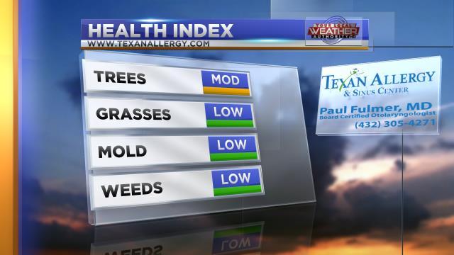 Health Index