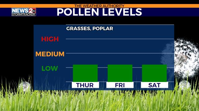 Tennessee Pollen Count