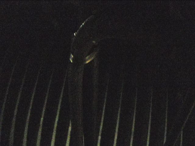 Lake Hartwell Webcam